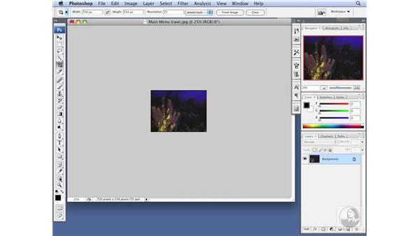 Resizing an image for DVD in Photoshop: DVD Studio Pro 4 Essential Training