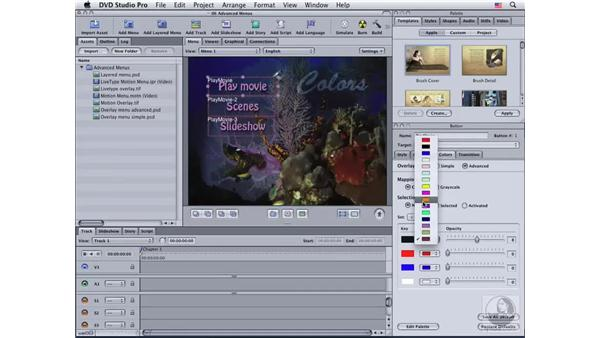 Editing the highlight color palette: DVD Studio Pro 4 Essential Training