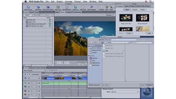 Creating a still frame using a marker: DVD Studio Pro 4 Essential Training