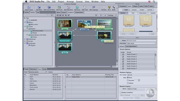 Building a complex story: DVD Studio Pro 4 Essential Training