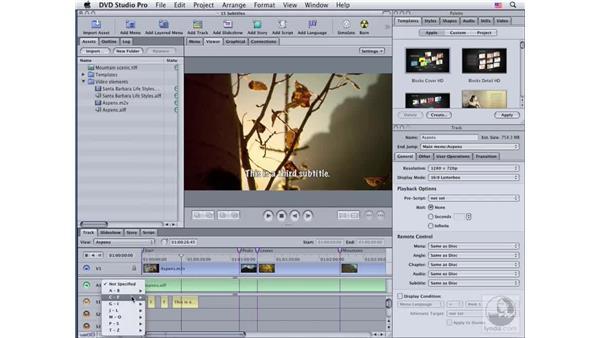 Formatting subtitles: DVD Studio Pro 4 Essential Training