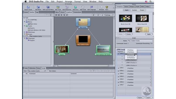 Building a simple script: DVD Studio Pro 4 Essential Training