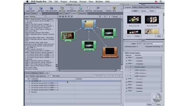 Playing multiple angles with scripts: DVD Studio Pro 4 Essential Training