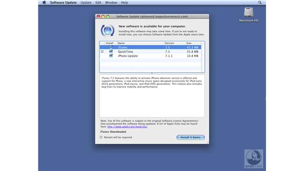 Verifying clients are using Software Update Server: Mac OS X Server 10.5 Leopard Essential Training