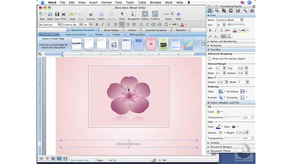Using Document Elements: Office for Mac 2008 New Features
