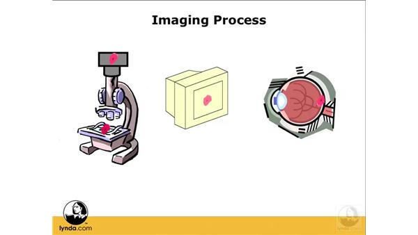 Understanding research image workflows: Photoshop CS3 Extended for BioMedical Research