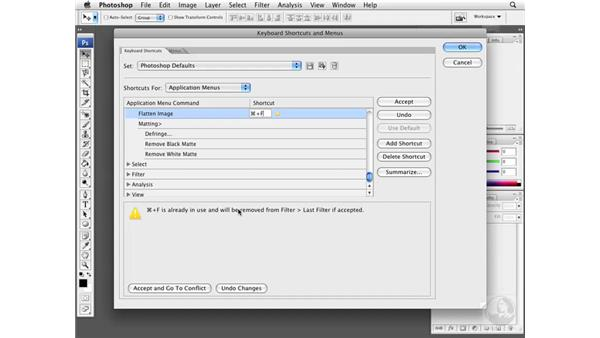 Working with keyboard commands: Photoshop CS3 Extended for BioMedical Research