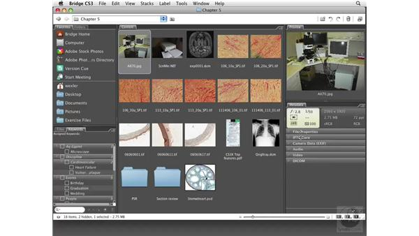 Organizing images: Photoshop CS3 Extended for BioMedical Research