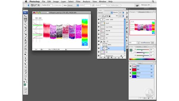 Using layers to compare histological localization: Photoshop CS3 Extended for BioMedical Research