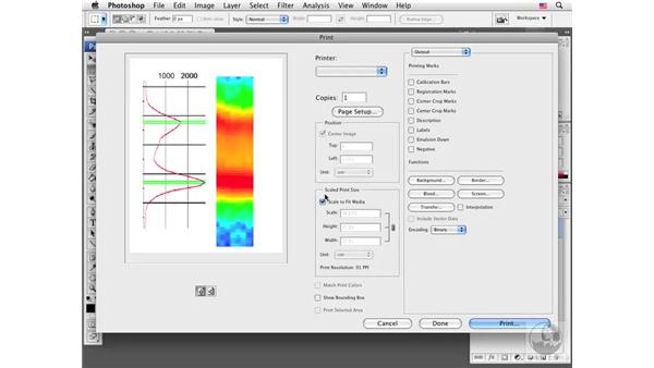 Using the Print interface: Photoshop CS3 Extended for BioMedical Research