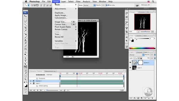 Creating a DICOM animation: Photoshop CS3 Extended for BioMedical Research