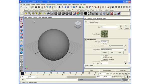 Using bitmaps: Maya 2008 Essential Training