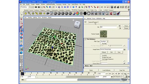 Performing texture mapping on NURBS surfaces: Maya 2008 Essential Training