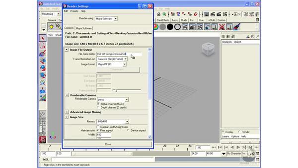 Understanding Render settings: Maya 2008 Essential Training