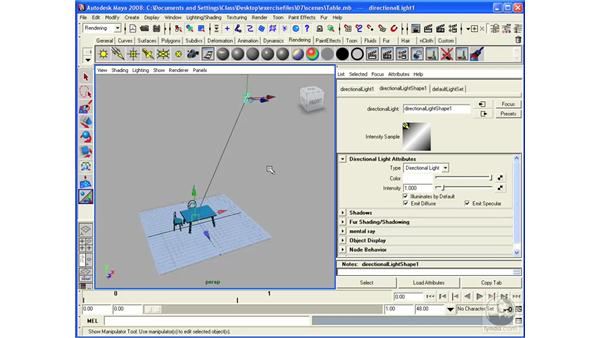 Understanding lighting types: Maya 2008 Essential Training
