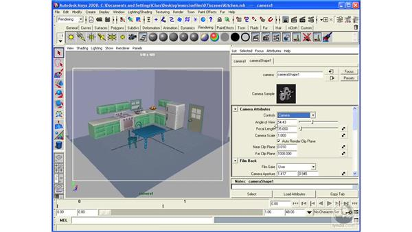 Understanding the basics of cameras: Maya 2008 Essential Training