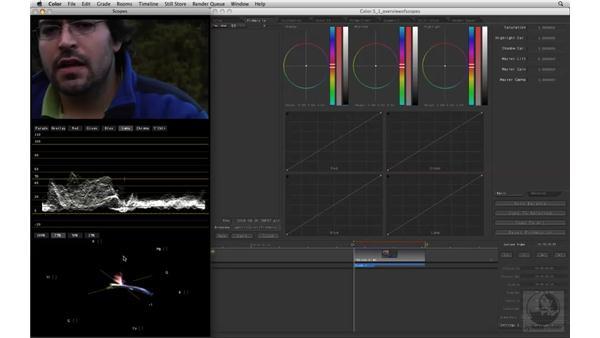 Understanding scopes: Apple Color Essential Training