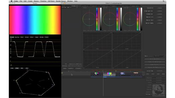 Evaluating color with scopes: Apple Color Essential Training