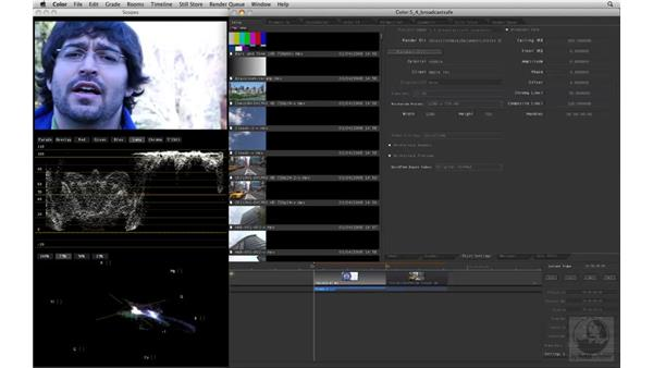 Understanding Broadcast Safe and the scopes: Apple Color Essential Training