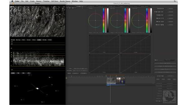 Widening the contrast ratio of clips with the Color Balance controls: Apple Color Essential Training