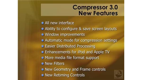 Understanding the new features: Compressor 3 Essential Training
