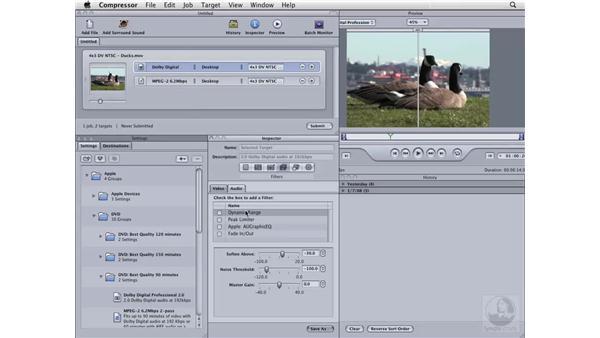 Using the Filters pane: Compressor 3 Essential Training