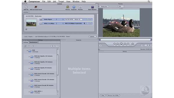 Compressing NTSC 4x3 DV for DVD: Compressor 3 Essential Training