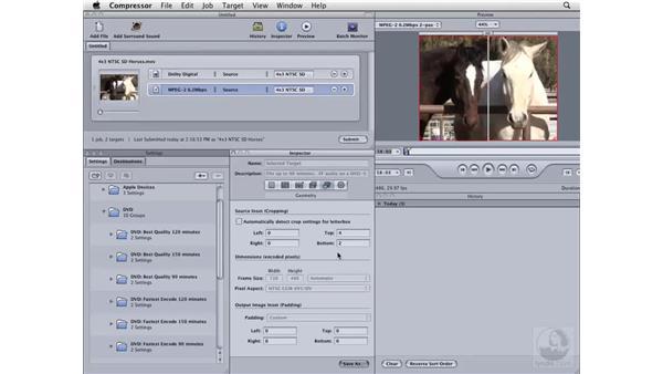 Compressing NTSC 4x3 SD for DVD: Compressor 3 Essential Training