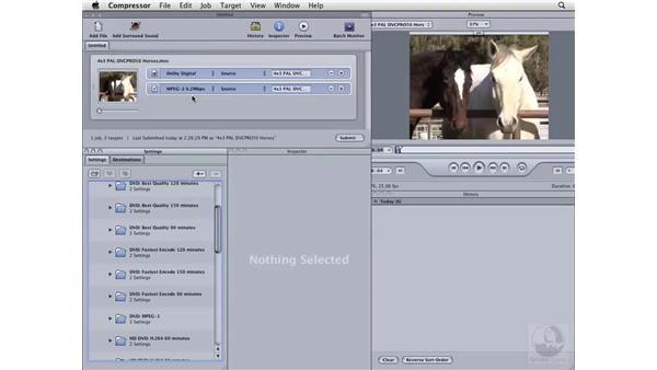 Compressing PAL for DVD: Compressor 3 Essential Training