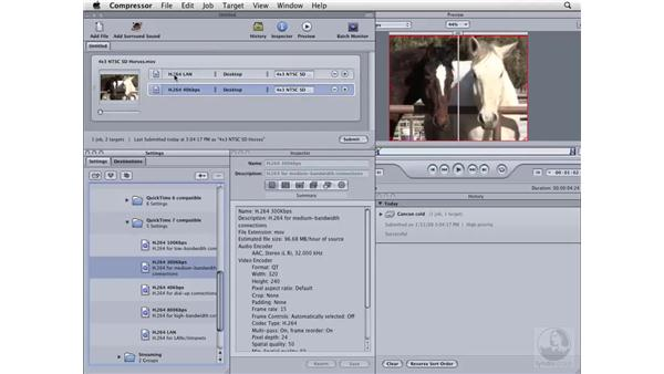Creating a movie to email: Compressor 3 Essential Training