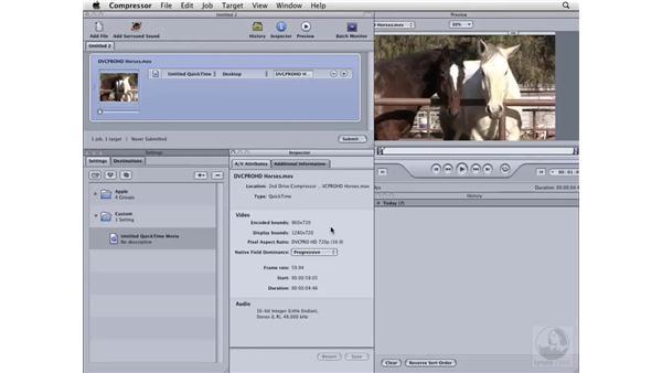 Scaling video: Compressor 3 Essential Training