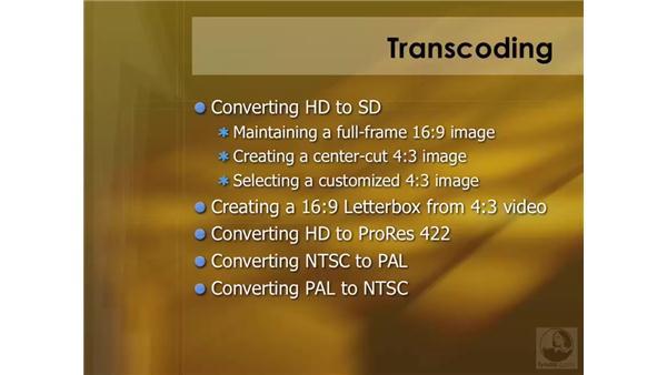 Understanding transcoding: Compressor 3 Essential Training