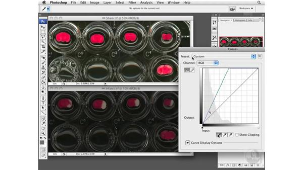 Optimizing the image: Photoshop CS3 Extended: Research Methods and Workflows