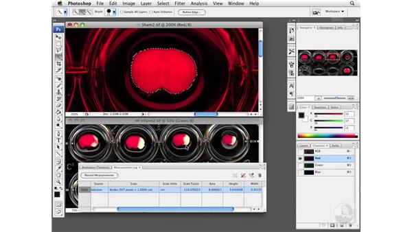 Analyzing areas: Photoshop CS3 Extended: Research Methods and Workflows