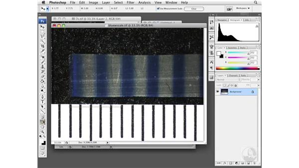 Creating a differential ratio: Photoshop CS3 Extended: Research Methods and Workflows