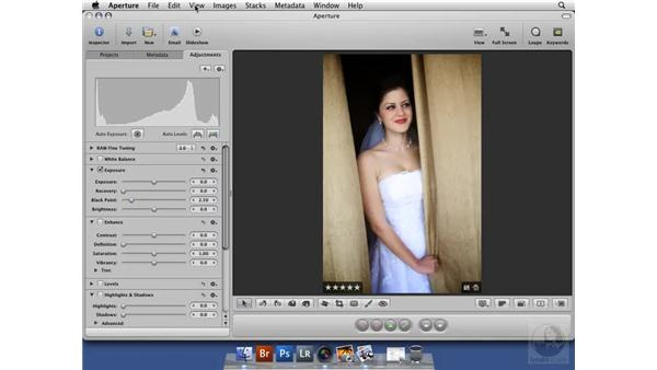 Understanding the Recovery slider: Aperture 2 New Features