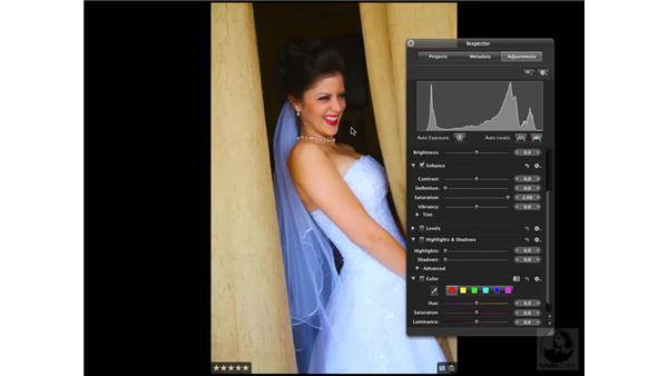 Understanding the Vibrancy slider: Aperture 2 New Features