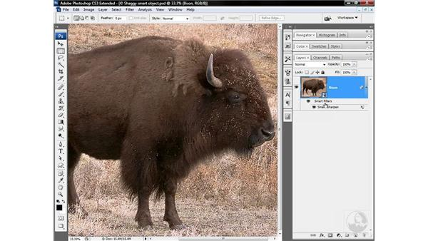 Applying editable smart filters: Photoshop CS3 Sharpening Images