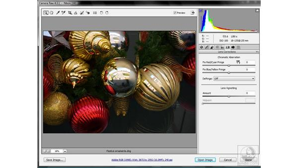 Introducing Camera Raw (4.1 or later): Photoshop CS3 Sharpening Images