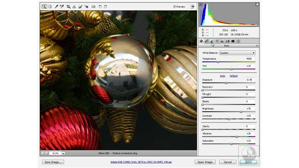 Using Camera Raw's sharpening control: Photoshop CS3 Sharpening Images