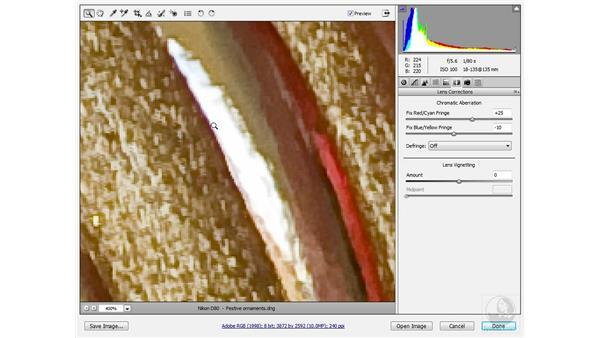 Using the Defringe option: Photoshop CS3 Sharpening Images
