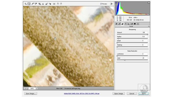 Raising the Detail value: Photoshop CS3 Sharpening Images