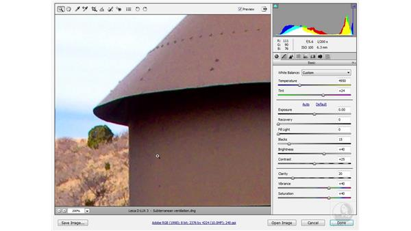 Eliminating color noise: Photoshop CS3 Sharpening Images