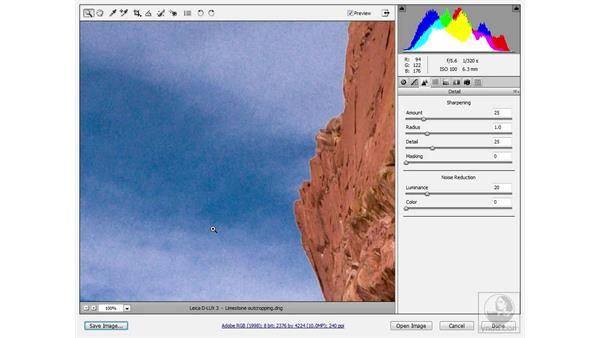 """Correcting """"false sharpening"""": Photoshop CS3 Sharpening Images"""