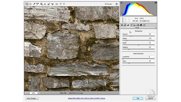 Sharpening a layered composition: Photoshop CS3 Sharpening Images