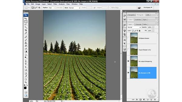 Revealing high-frequency multipass sharpening: Photoshop CS3 Sharpening Images
