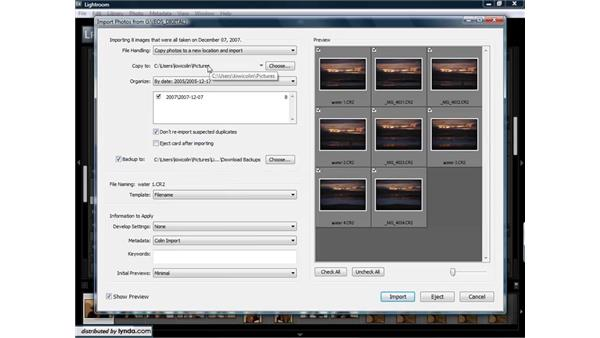 Importing images from a flash card, CD, or DVD: Lightroom 1.3 for Digital Photographers