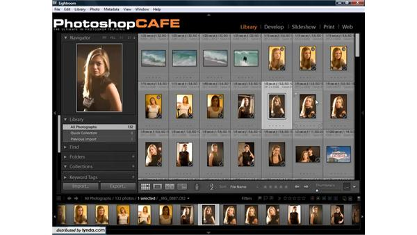 Working with collections and folders: Lightroom 1.3 for Digital Photographers