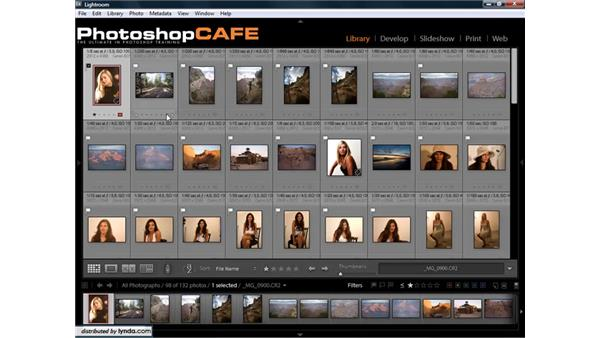 Using filters to find photos: Lightroom 1.3 for Digital Photographers