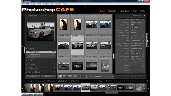 Understanding and applying metadata: Lightroom 1.3 for Digital Photographers